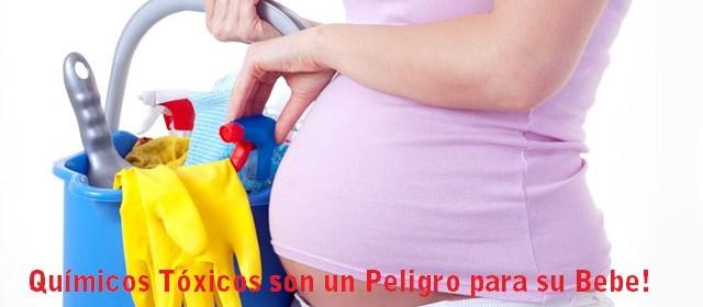 Mujeres Embarazadas y Quimicos toxicos